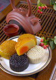 Mid-Autumn Festival to eat moon cake Royalty Free Stock Photo