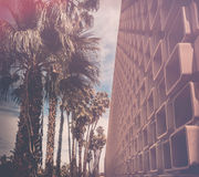 Mid Century  Modern theme backgroun. D - classic Californian Style - brick wall texture and palm trees Stock Image
