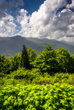 Mid-day view of the Appalachian Mountains from the Blue Ridge Pa Stock Photography