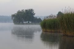 Mid-morning over lake. Foggy mid morning over lake royalty free stock images
