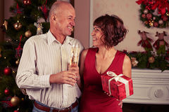 Mid portrait of senior married couple standing near Christmas tr Royalty Free Stock Photo