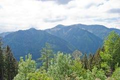Mid-range bergen met gemengd bos Stock Foto's