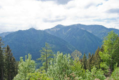 Mid-range mountains with mixed forest. Stock Photos