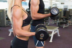 Mid section of couple exercising with dumbbells in gym Royalty Free Stock Photo