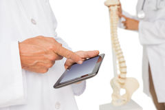 Mid section of doctors with digital table and skeleton model Royalty Free Stock Photos