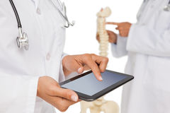Mid section of doctors with digital table and skeleton model Stock Images