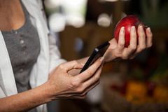 Mid section of female costumer holding apple while using mobile phone Stock Photography