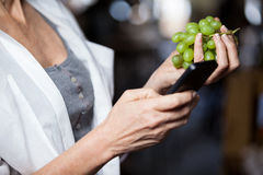 Mid section of female costumer holding grapes while using mobile phone. In supermarket stock photos