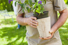 Mid section of a man holding flower pot at park Stock Photography