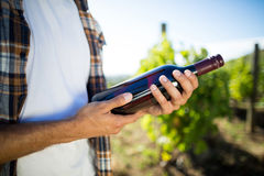 Mid section of man holding wine bottle at vineyard Stock Photos