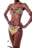 Mid section of samba dancer. Cropped image of a woman samba dancer Stock Photography