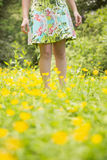 Mid section of woman in field Royalty Free Stock Images
