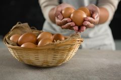 Woman holding brown eggs. Mid-section of woman holding brown eggs Royalty Free Stock Photo