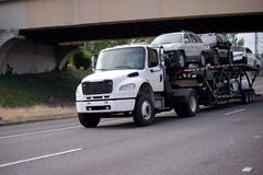Mid size semi truck car hauler transporting vehicles on the road. A white medium-duty car hauler semi truck transports vehicles on a special two-tier semi Royalty Free Stock Images