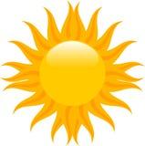 Mid summer sun Stock Photography