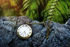Mida el tiempo del concepto, reloj de bolsillo de oro del vintage en el bosque tropical Imagenes de archivo
