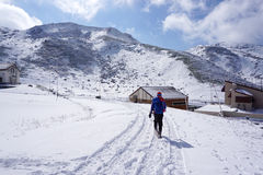 Midagahara领域在11月有雪山背景 库存照片