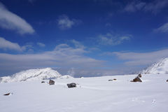 Midagahara-Feld im November mit Schneegebirgshintergrund Lizenzfreies Stockfoto