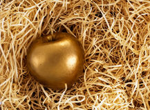 The Midas touch - golden apple, protected investment Royalty Free Stock Photography