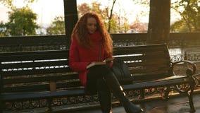 Middag van de de herfst de zonnige dag in het park, leest de jonge dame een boek, zit het meisje op parkbank met haar zak, de her stock footage