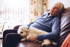 Middagdutje met de Hond Royalty-vrije Stock Foto's