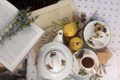 Middagthee in een tuin Stock Foto