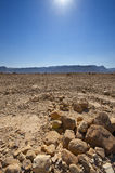 Midday in Israel Desert Royalty Free Stock Images