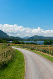 Midday sunny Irish countryside. Countryside view in Killarney National Park Stock Photos