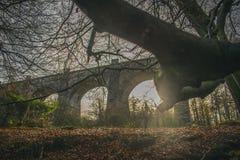 Middeleeuws Aquaduct in van het het Aquaduct de Tweede Hoogste Aquaduct van Schotland Avon Oude baksteenconstructie Schot royalty-vrije stock foto's