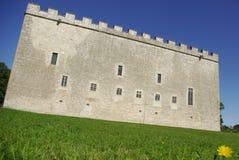 Middeleeuws kasteel royalty-vrije stock afbeeldingen