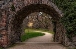 Middeleeuws kasteel van Hoechst, Frankfurt, Duitsland royalty-vrije stock fotografie