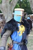 Middeleeuws kostuum royalty-vrije stock afbeelding