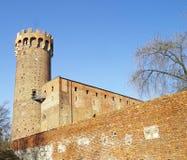 Middeleeuws Teutonic kasteel in Polen Stock Fotografie