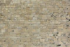 Middeleeuwse bakstenen muur Stock Afbeeldingen