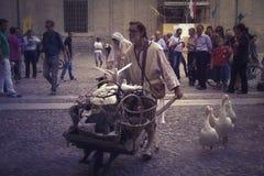 Middeleeuwse boer Royalty-vrije Stock Foto's