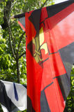 Middeleeuwse gestileerde banners in Sighisoara, Transsylvanië Stock Foto's