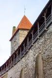 Middeleeuwse muur en toren in de oude stad van Tallinn Royalty-vrije Stock Afbeeldingen
