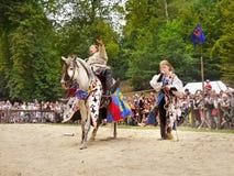 Middeleeuwse Ridder Costume Horse Royalty-vrije Stock Foto