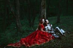 Middeleeuwse ridder met dame stock foto