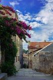 Middeleeuwse smalle straat in de oude stad Stock Fotografie