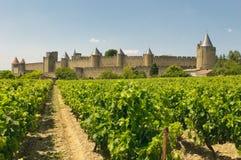 Middeleeuwse stad van Carcassonne en wijngaarden royalty-vrije stock fotografie