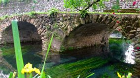 Middeleeuwse steenbrug in de kleurrijke tuin van Eden trillend met rozen en rivier stock footage