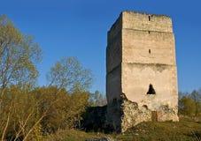 Middeleeuwse toren Stock Fotografie