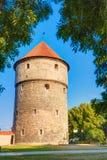 Middeleeuwse Toren kiek-in-DE-Kok in Park op Heuvel Toompea in Tallinn Stock Afbeeldingen
