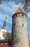 Middeleeuwse toren in Torensvierkant, Tallinn stock afbeelding