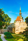 Middeleeuwse torens - een deel van oud de stadsmuur Tallinn, Estland stock fotografie