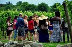 Middeletown, RI: Visitors on Vineyard Tour Stock Photos