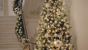 Middelgrote lange die schuine stand omhoog van nieuwe jaar 2019 boom of Kerstboom wordt geschoten, vlak stock footage