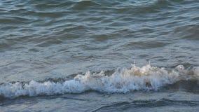 Middellandse Zee, installaties, aard en het milieu stock videobeelden