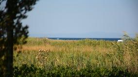 Middellandse Zee, installaties, aard en het milieu stock footage